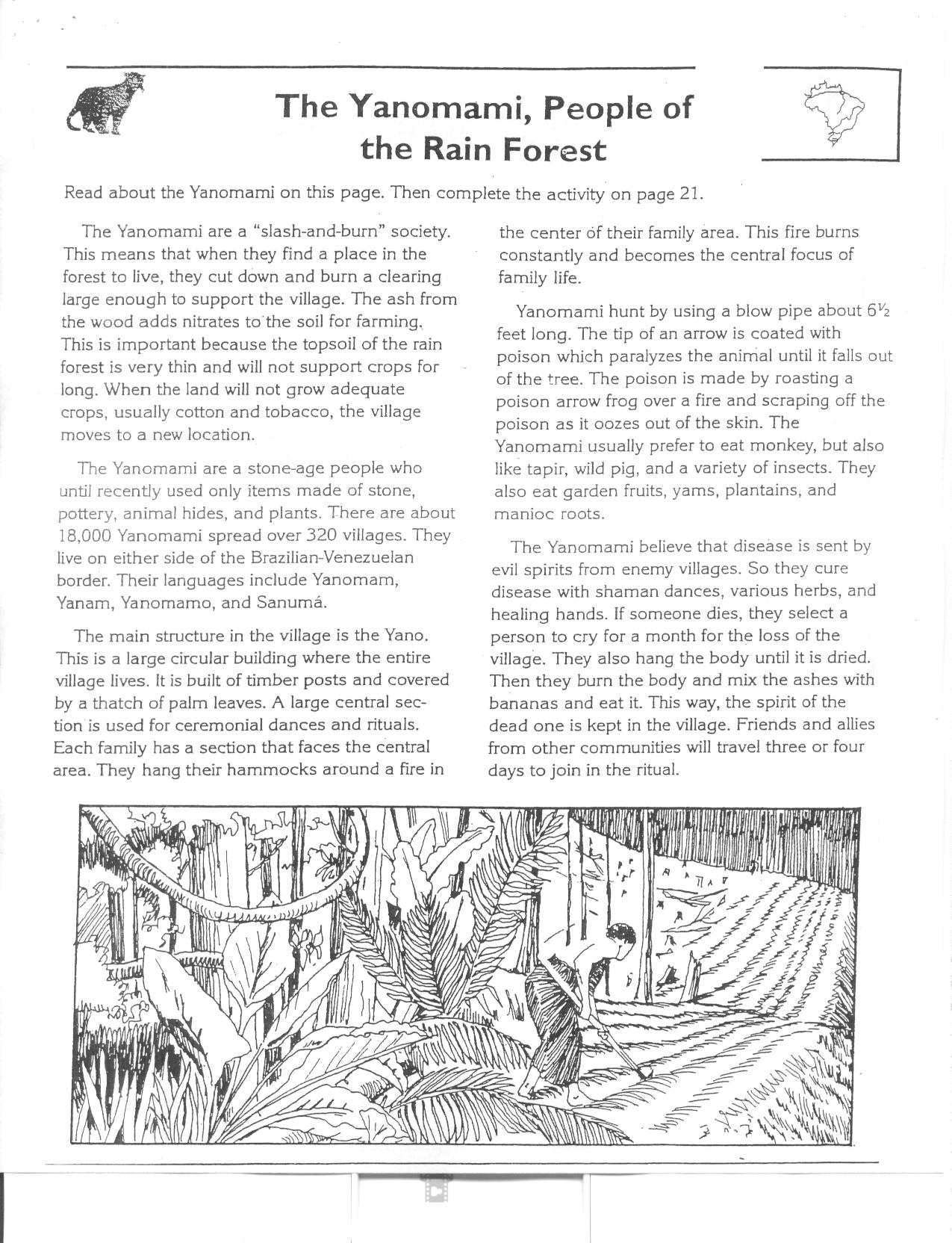 Worksheets Layers Of The Rainforest Worksheet new page 0 students will compare the lives of amazonian people yanomami to their amazon rainforest packet